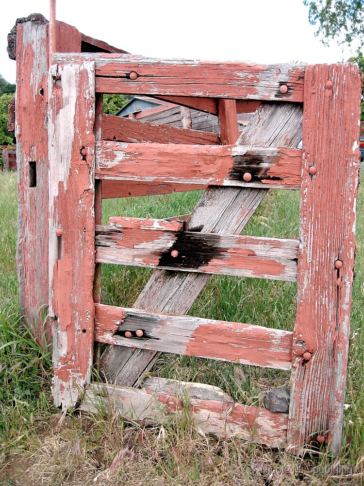 red fence by Nicole M. Spaulding