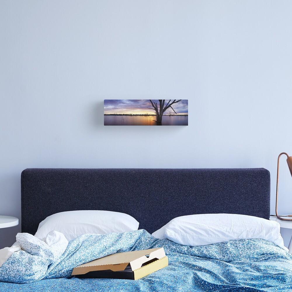 Lake Eppalock, Heathcote, Victoria, Australia Canvas Print