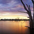 Lake Eppalock, Heathcote, Victoria, Australia by Michael Boniwell