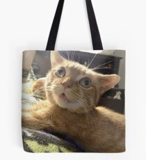 """Neuro Dan - Feather Dan """"Is it FEATHERS time?"""" Tote Bag"""