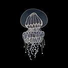 Jellyfish drawing by Bronia Sawyer