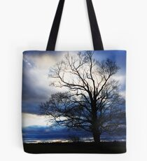 winter approaches... Tote Bag