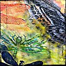 Dragonfly and Moth by Susan  Detroy
