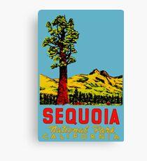 Sequoia National Park California Vintage Travel Decal Canvas Print