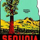 «Calcomanía de viaje vintage Sequoia National Park California» de hilda74