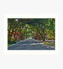 South Boundary Avenue Art Print