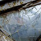 glass 2 by Nicole M. Spaulding