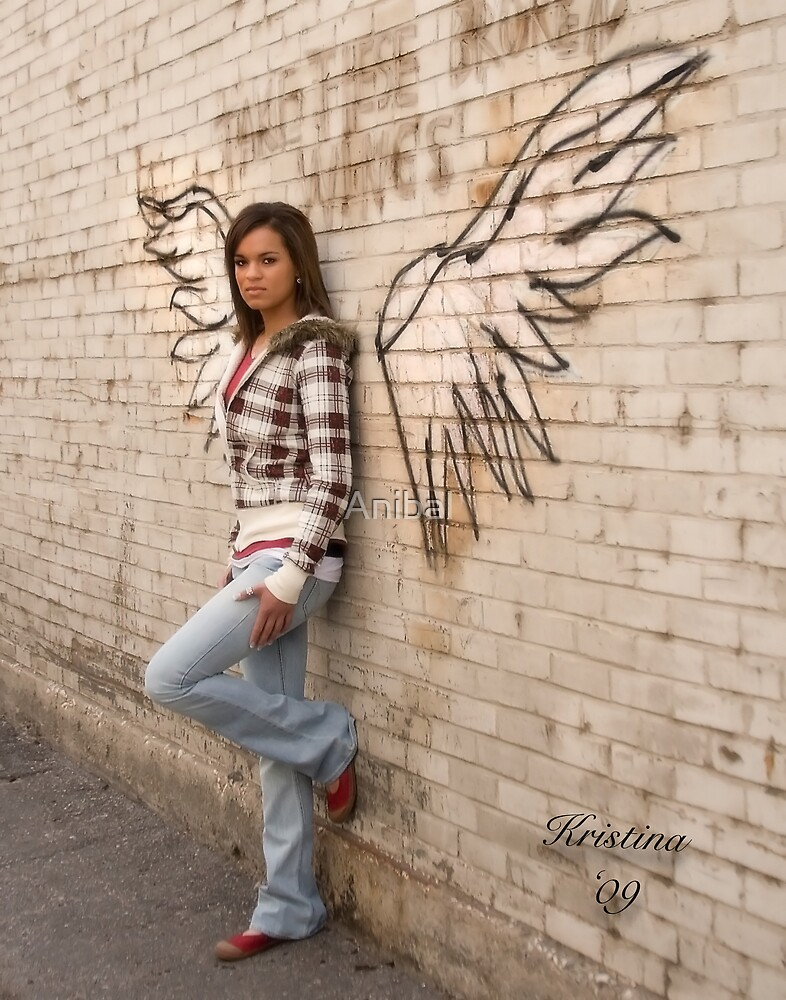 Take These Broken Wings by Anibal
