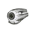 Eye  by Sami Bayly