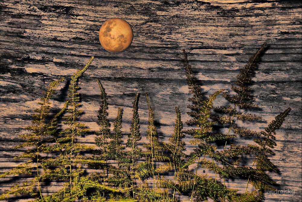 Harvest Moon by andreisky