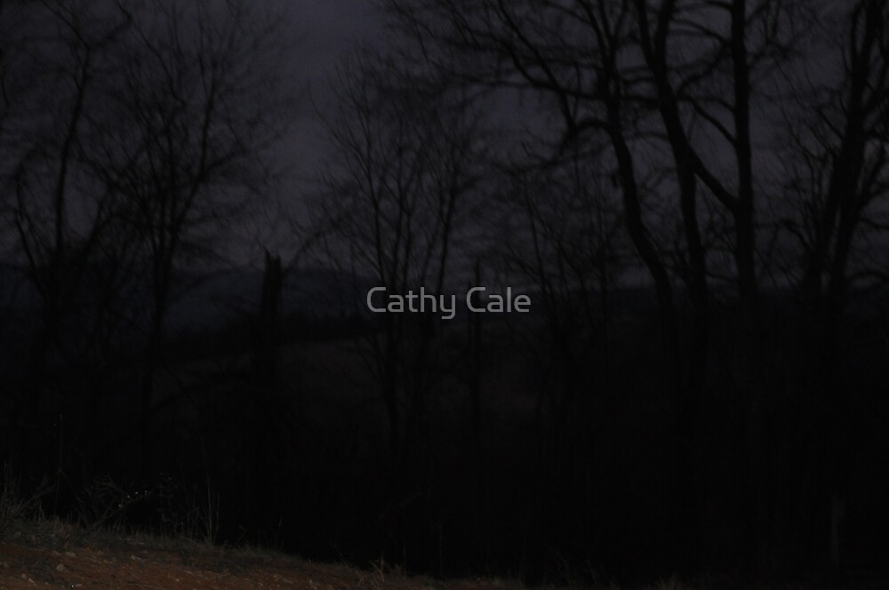 Nightime on the Farm by Cathy Cale