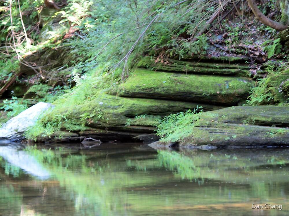 old stream rocks Bushkill - Belfast PA by Dan Chang