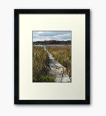 Rotten Lake, Ontario Canada Framed Print