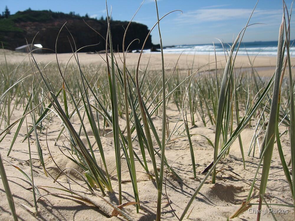 Beach Grass by Cheryl Parkes