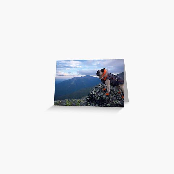 The Majestic Mountain Climbing Adventure Pug Greeting Card