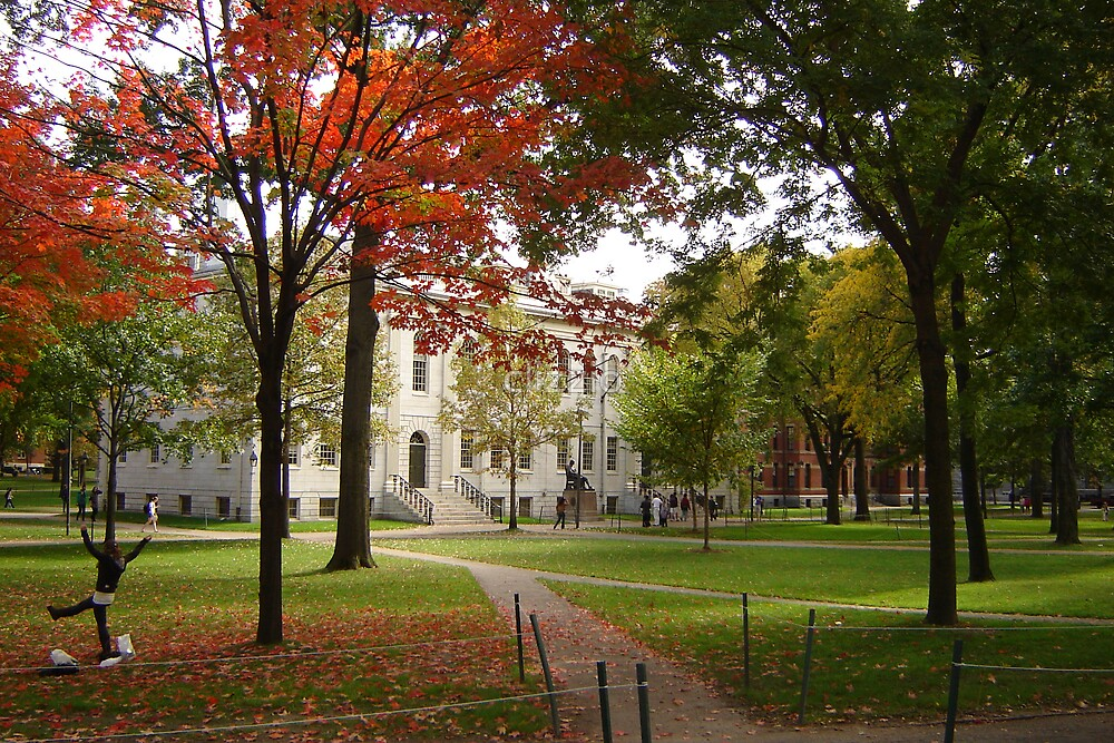 Harvard University Campus Mall by clizzio