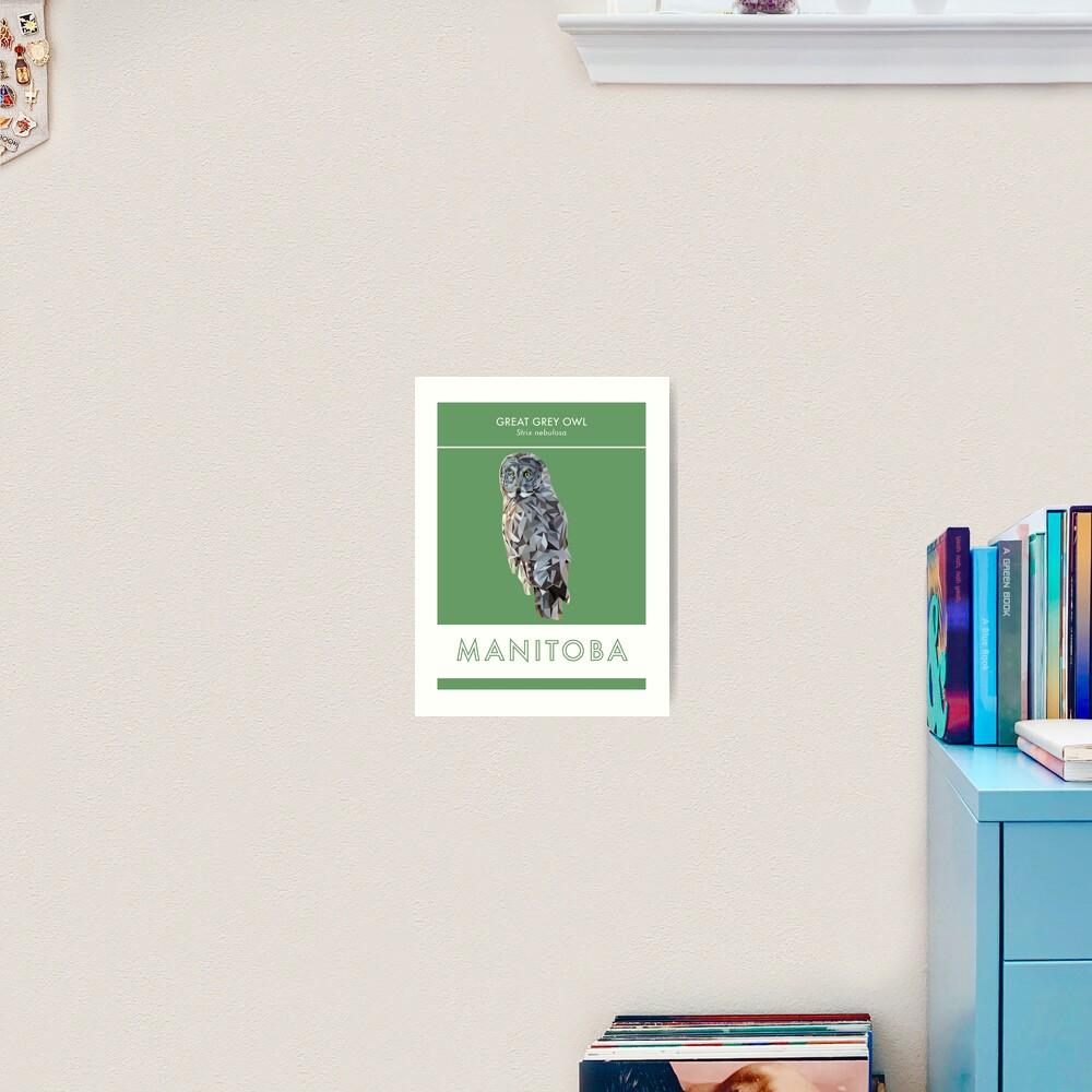 Manitoba - Great Grey Owl Art Print