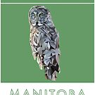 Manitoba - Great Grey Owl by grainnedowney