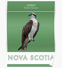Nova Scotia - Osprey Poster