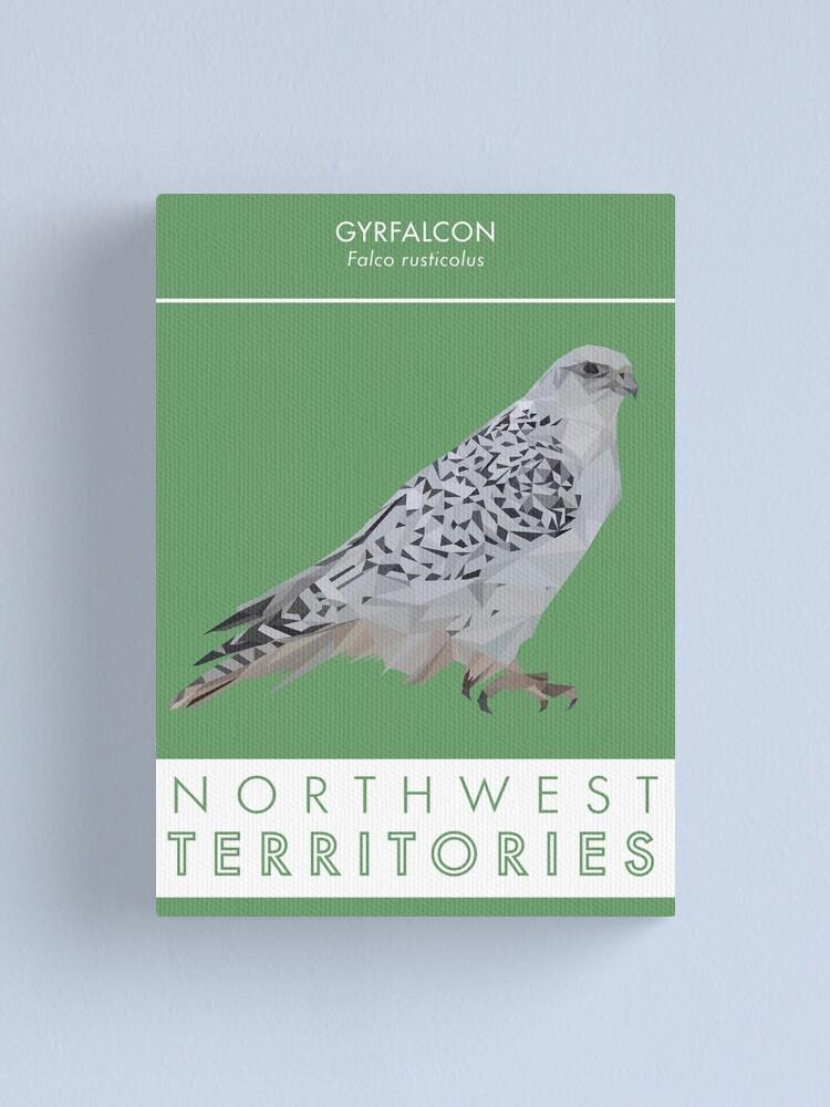 Alternate view of Northwest Territories - Gyrfalcon Canvas Print