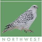Northwest Territories - Gyrfalcon by grainnedowney