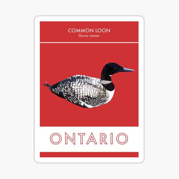 Ontario - Common Loon Sticker