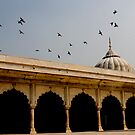 Architecture, India by lizzyc