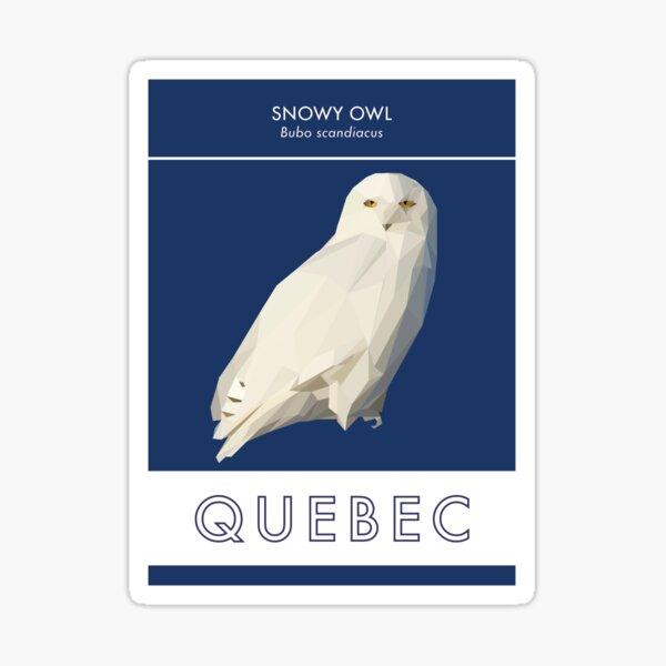 Quebec - Snowy Owl Sticker