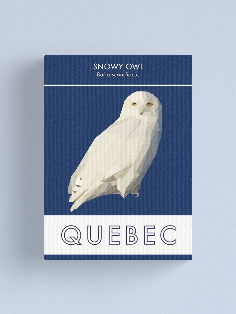 Alternate view of Quebec - Snowy Owl Canvas Print