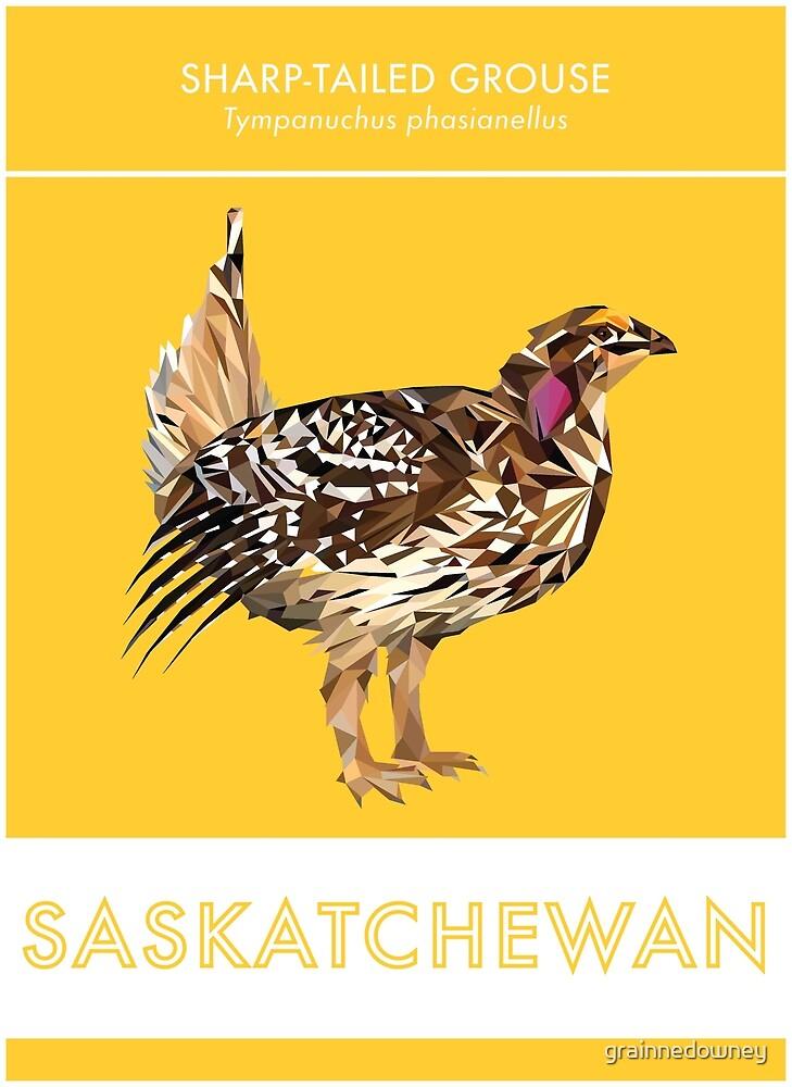Saskatchewan - Sharp-tailed Grouse by grainnedowney