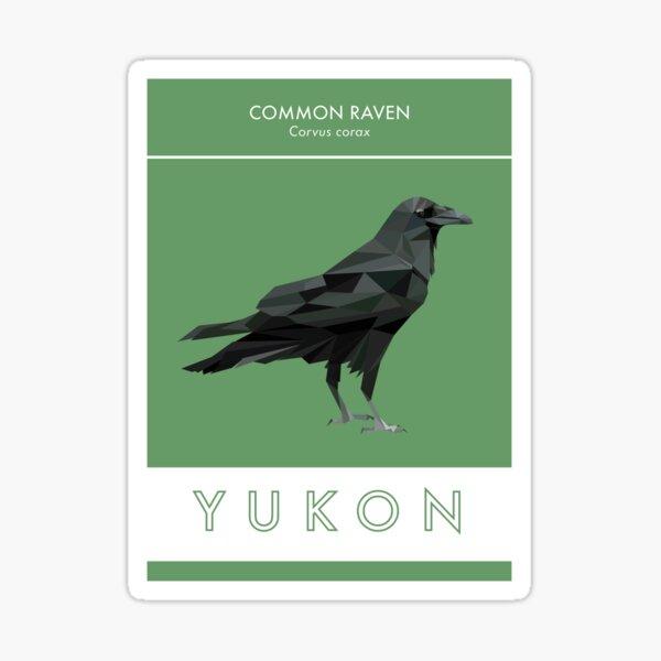 Yukon - Common Raven Sticker