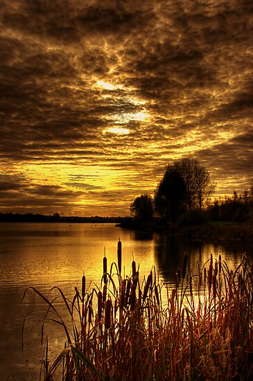 Dreamy Sunset by doublevision