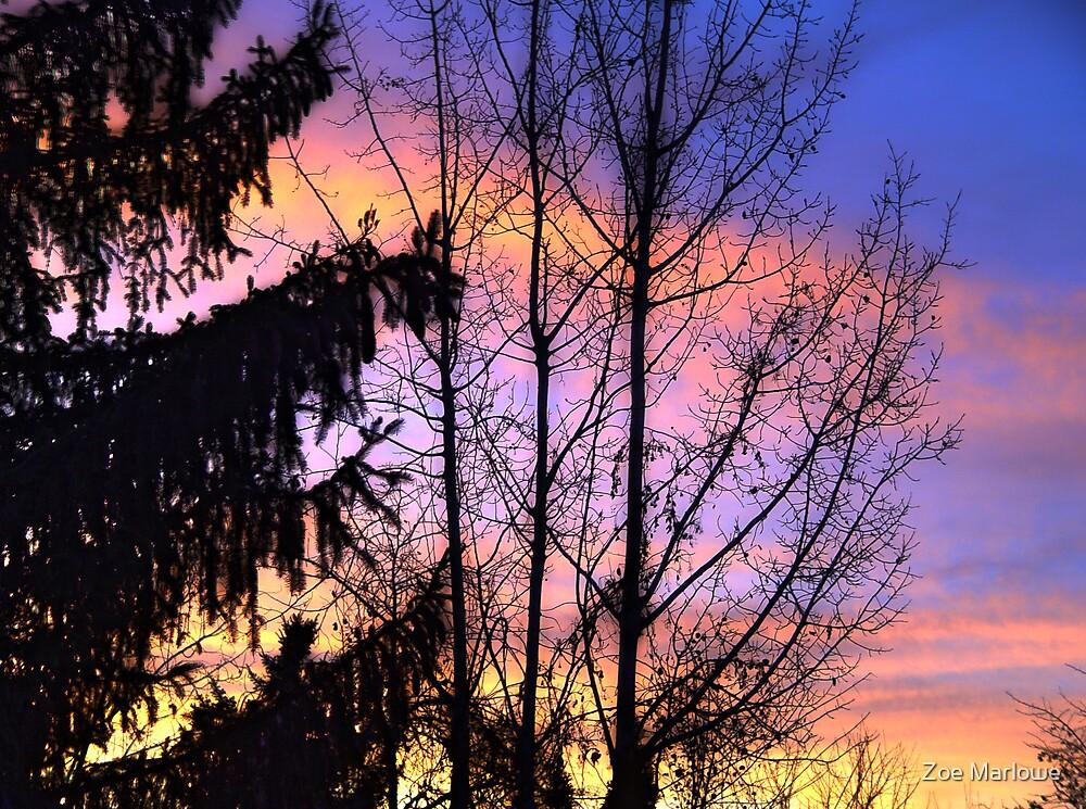 Tonight's Sunset by Zoe Marlowe