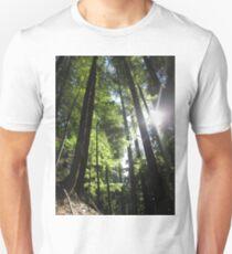 Sonnenbeschienene Tannenbäume Unisex T-Shirt