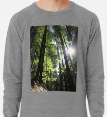 Sonnenbeschienene Tannenbäume Leichtes Sweatshirt