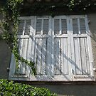 Closed shutters by knomz