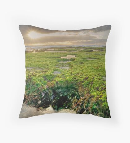 The Green Planet... Throw Pillow