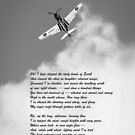 Silver P-40 High Flight poem B&W version by Gary Eason