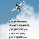 Silver P-40 High Flight poem by Gary Eason