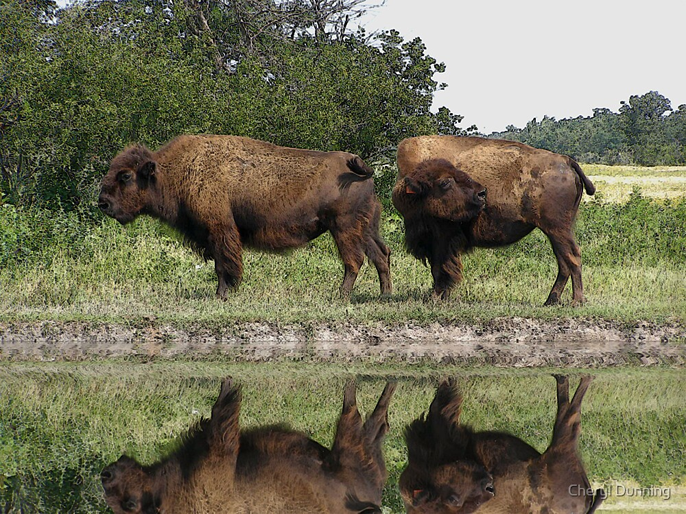whats that smell? by Cheryl Dunning