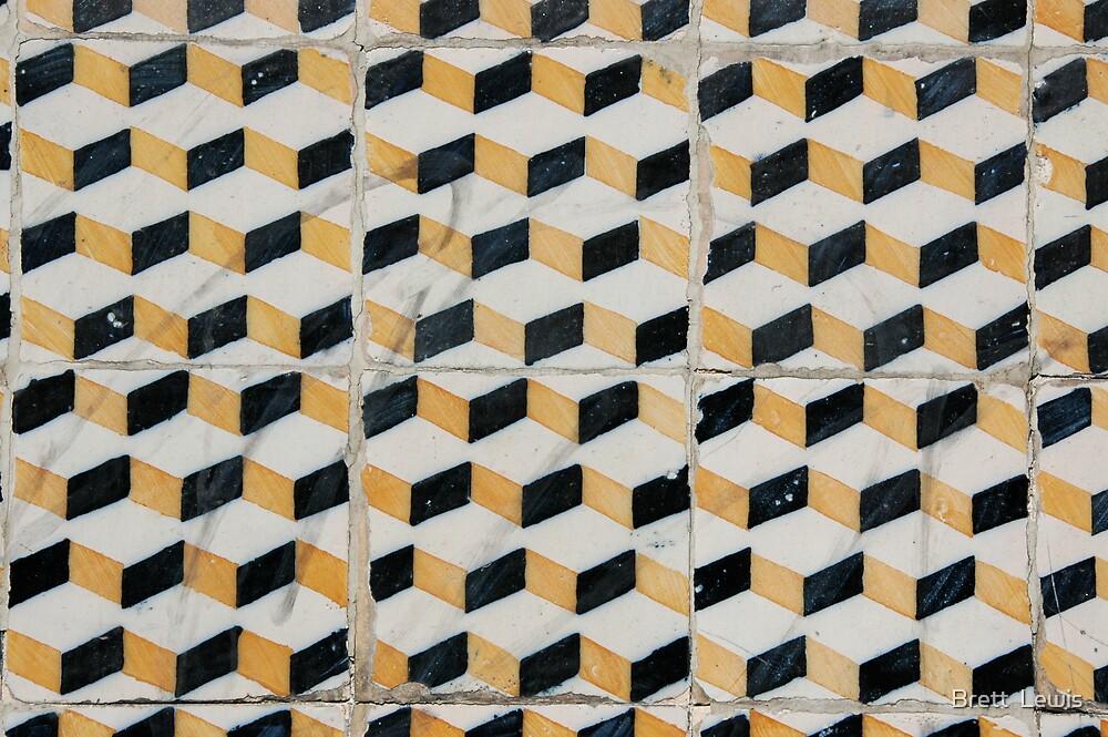 Tiles 4, Porto, Portugal by Brett  Lewis