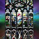 Leadlight Window, St Giles Cathedral, Edinburgh by Bev Pascoe
