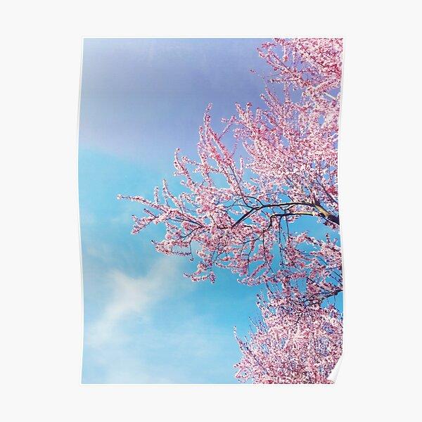 Blütenrausch Poster
