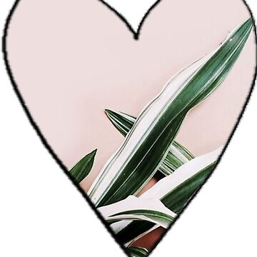 pink and green leaf heart by molly34