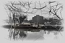 River Stort, Harlow by Nigel Bangert