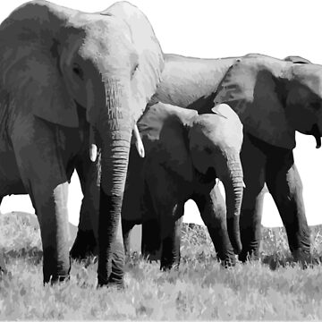 Three Elephants by Eliza434
