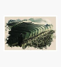 Wildlife Series - Bali Rıce Farmer Photographic Print