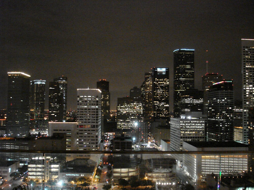 Houston Skyline At Night 1 by vmcwill