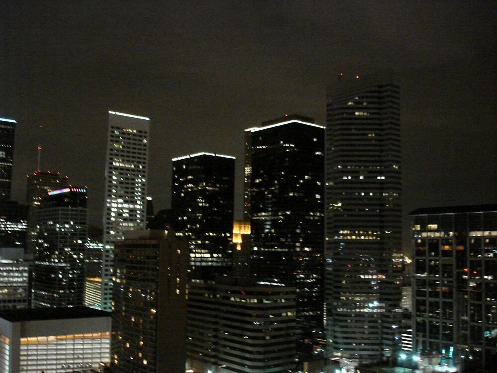 Houston skyline at night 2 by vmcwill