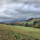 Welsh Landscape by duroo